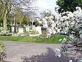 Hammersmith Cemetery, Clifford Avenue - geograph.org.uk - 1227701.jpg