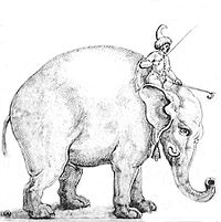Hanno.mahout clean.jpg