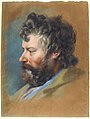 Head of a Bearded Man in Profile to Left MET 67.163.jpg