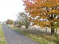 Herbst bei Kuhdorn - geo.hlipp.de - 6558.jpg