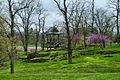 Hewlett Lewis Overlook Pavilion.jpg