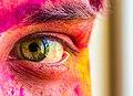 Holi eyes.jpg
