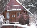 Holiday Moose - Alaska.jpg