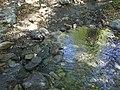 Holly Jim Trail - panoramio (1).jpg