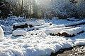 Holz vom Schnee bedeckt - panoramio.jpg