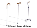 Home Care Cane Types.png