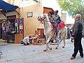Horse at Medina of Fés, Morocco.jpg
