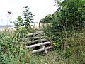 Horse jump, King Down - geograph.org.uk - 1470961.jpg