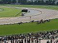Horse racing @ Tokyo Race Course @ Fuchu (14097749266).jpg