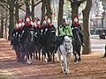 Horseguards at Buckingham Palace - geograph.org.uk - 1021951.jpg