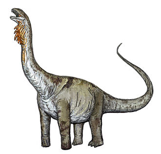 Huabeisaurus - Restoration