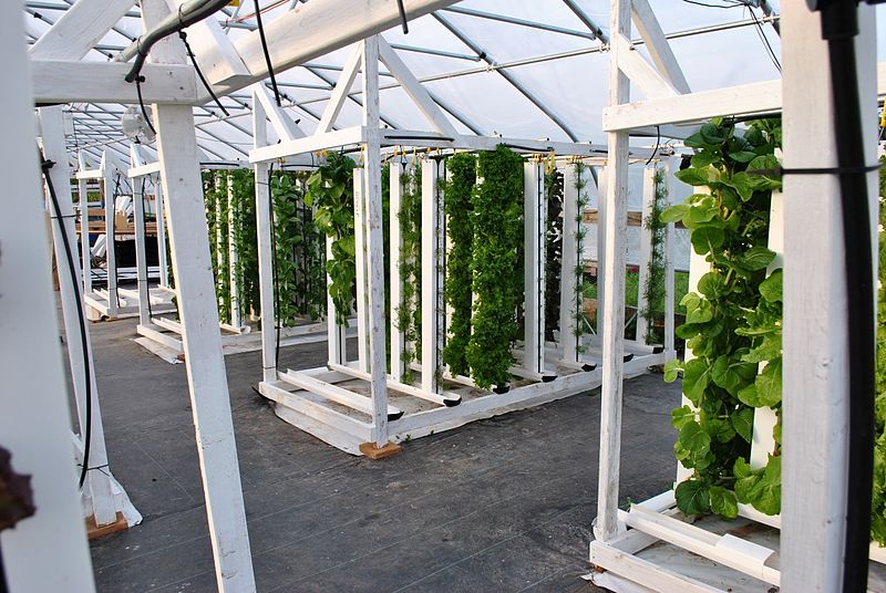 File:Hydroponic vertical farm.jpg