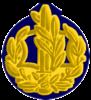IDF RASAR Yam-2.png