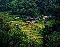 Indahnya Ranah Minang pemandangan Sungai Landia.jpg