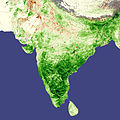India vegetation, natural and cultivated, favorable weather boosts Indian agriculture, April 2008.jpg