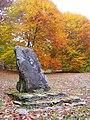 Innisfree Garden, Millbrook, NY - IMG 1573.jpg