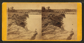 Iowa River near Iowa Falls, from Robert N. Dennis collection of stereoscopic views.png