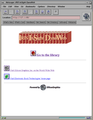 Irix Netscape IRIS InSight DynaWeb.png