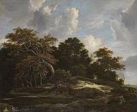 Jacob van Ruisdael - Waldlandschaft mit Hasenjagd - 872 - Bavarian State Painting Collections.jpg