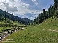 Jai Valley Bhaderwah 2.jpg