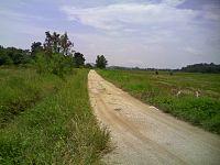 Jalan Ladang.jpg