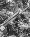 Japanese 3 inch naval gun in Gasmata.png