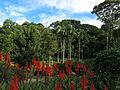 Jardim dos Sentidos - Jardim Botânico de SP - foto 1.JPG