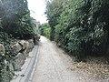 Jardin Paul-Didier - septembre 2018 - 2.JPG
