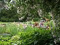 Jardin des Iris.JPG