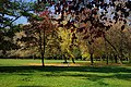 Jesen - panoramio (3).jpg