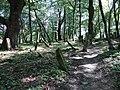 Jewish Cemetery - Lesko - Poland - 01 (35637633683).jpg