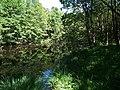 Jeziorko przy ścieżce z Vang do Hammershus - panoramio.jpg