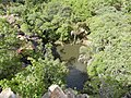 Joli marigot à Natitingou.jpg