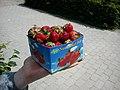 Jordbær (5833651270).jpg