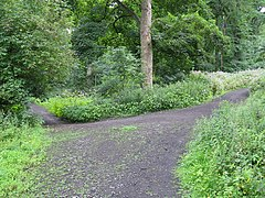 Junction of Paths on Corstorphine Hill - geograph.org.uk - 1400561.jpg