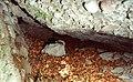Kőtorony-alatti-barlang.jpg