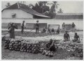 KITLV - 18764 - Kurkdjian - Soerabaja - Shelling of coconuts on Java - circa 1920.tif