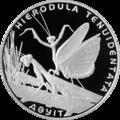 KZ-2012-500tenge-Hierodula-b.png