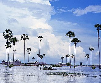 Kampong Speu Province - A flooded field in Kompong Speu