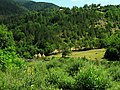 Kanjon Belog Rzava - panoramio (10).jpg