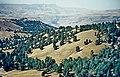Kars Yaylası 09 1984 Soğanlı Dağları bei Sarıkamış.jpg