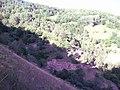 Kaymakların Çayırından Deredekiler ve Gölyanı - panoramio.jpg