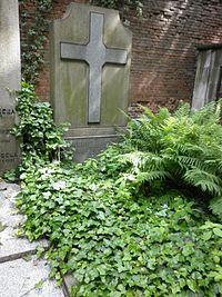 Kazimierz Stabrowski grób.JPG