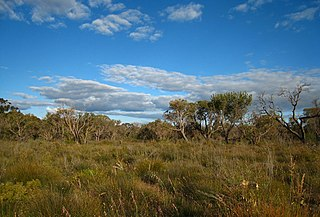 Kensington, Western Australia Suburb of Perth, Western Australia