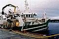 Killybegs - Fishing ships docked in harbour - geograph.org.uk - 1340550.jpg