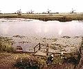 Kinderdijk,after 2 (8636831197).jpg