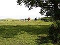 Kirkchrist Fields - geograph.org.uk - 862414.jpg