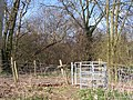 Kissing gate into Puddlets Wood - geograph.org.uk - 1217859.jpg