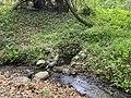 Kosmaj forest 6.jpg