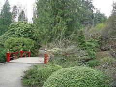 Kubota Garden 14.jpg